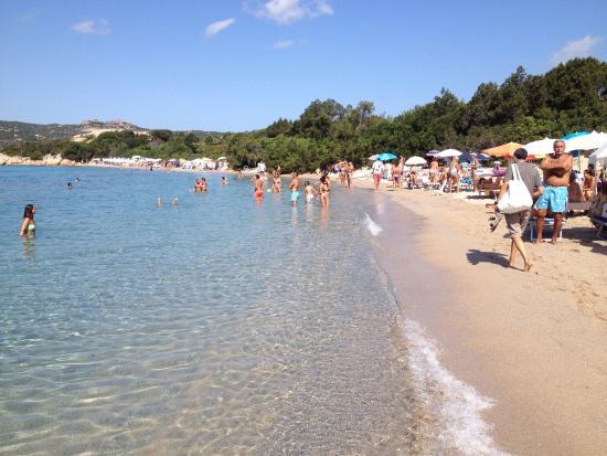Spiaggia della celvia